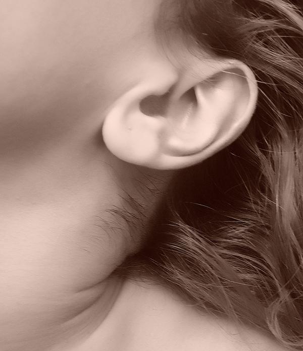 Tapones oídos